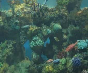 Malta National Aquarium New Build